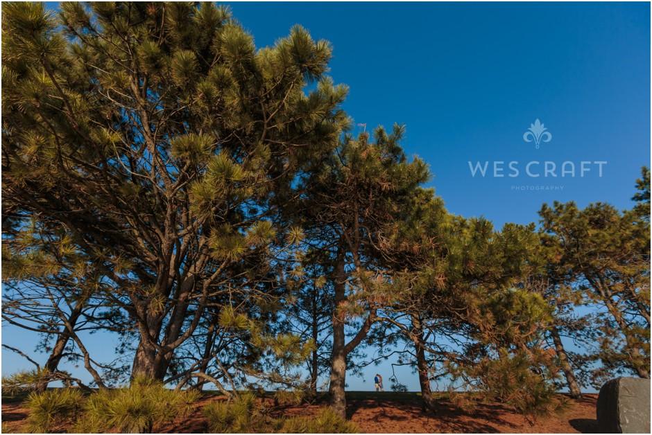 Landscape Photography at Northwestern University