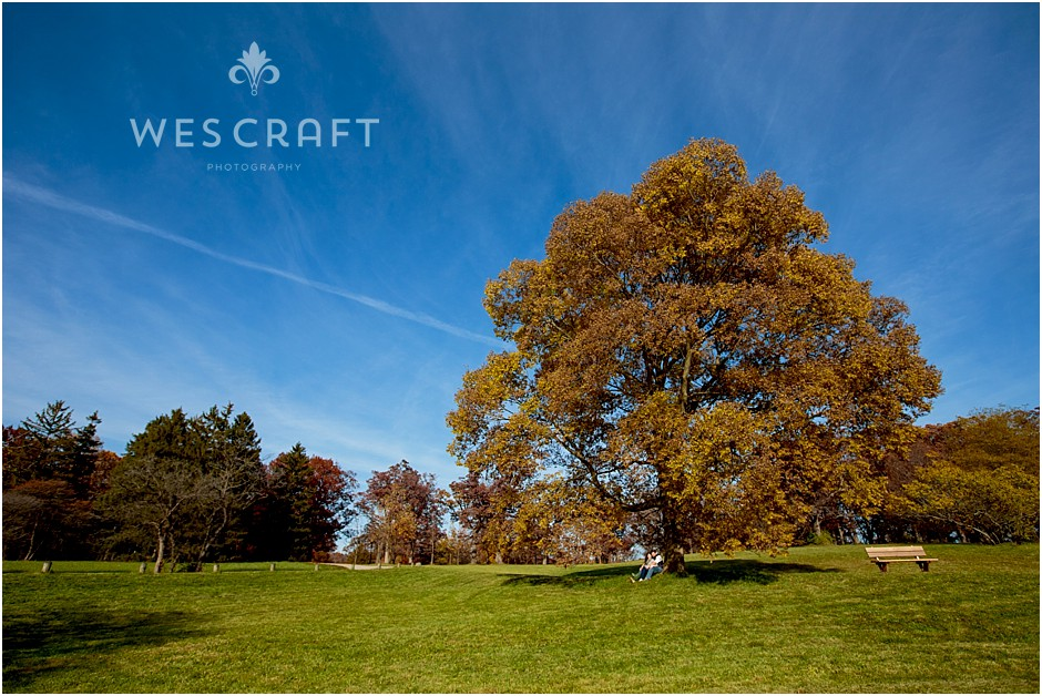 A Fall Engagement at The Morton Arboretum