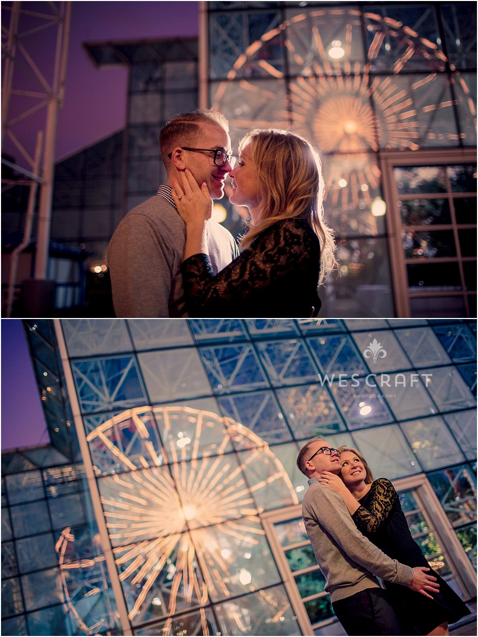 A Chicago Navy Pier Engagement Session