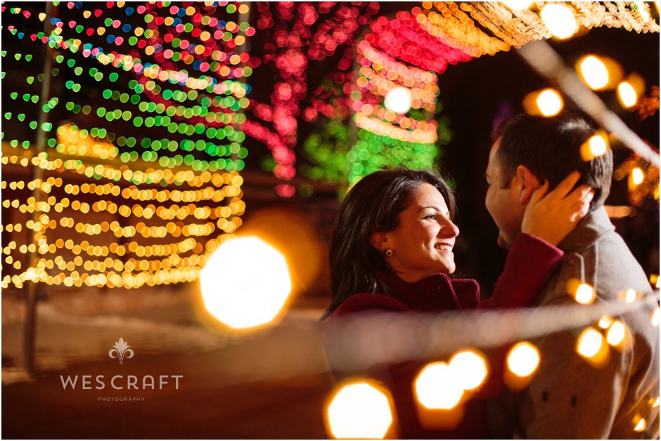 Zoo Lights Tunnel of Light Romantic Photograph