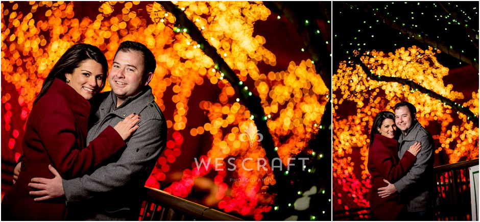 Lincoln Park Zoo Christmas Lights Engagement Session002
